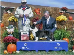 Cooper Championship Photo