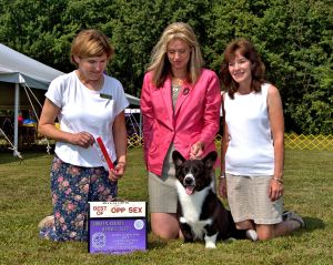 Cracker made us proud on the last day of the Regional show by taking BOS. Shown with Handler Christie and owner LuAnn. They make a GREAT TEAM.