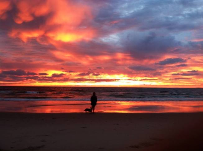 NC sunset with Gwyn